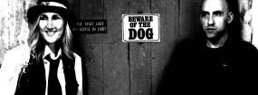 Pet Dog Storm- Biography